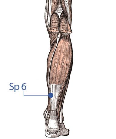 punkt akupunkturowy na zimne dłonie i stopy, Sp 6, moksoterapia, noga