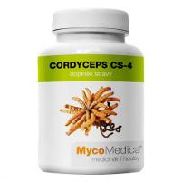 grzyby chińskie, suplementy diety, grzyby lecznicze, cordyceps, kordyceps