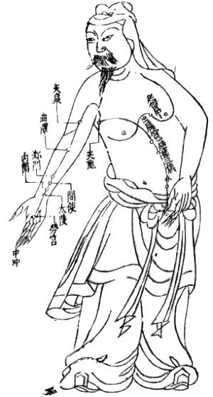 meridiany, meridian, meridiana, tradycyjna medycyna chińska, akupunktura